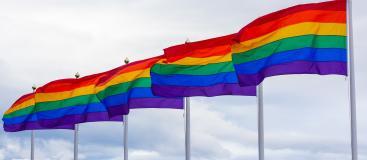 June Pride Spotlight